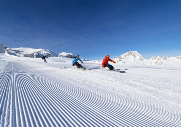 Sportovní lyžování